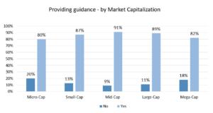Providing guidance - by Market Capitalization